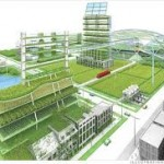 Urban Farming > Albert Heijn?