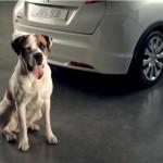 Honda Civic: Follow Happy