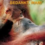 Inhakers zomer 2012 – Ook moeder natuur verdient een mooie Moederdag