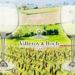 4 of 8 Villeroy & Boch glazen voor witte of rode wijn met 46% korting