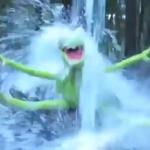 Ice Bucket Challenge – wie nog niet?
