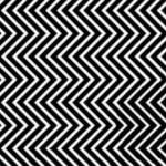 optische illusie panda viral